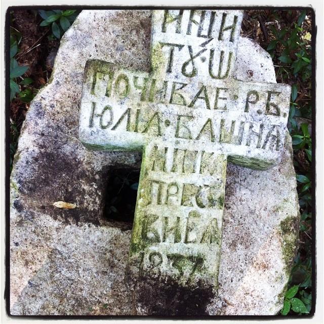 Dla Dolnoślązaka każdy grób starszy niż 1946 jest czymś wyjątkowym. Stare Brusno #polskaegzotyczna #cmentarz #starebrusno