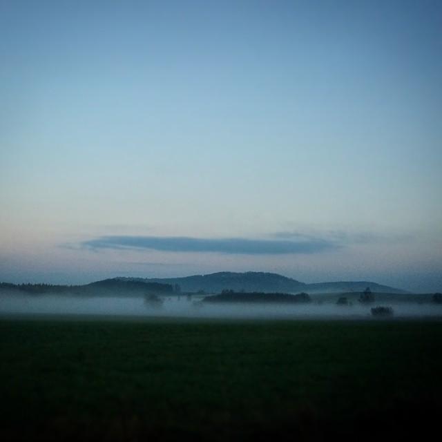 Zimno ;)#fog #mgla #poranek #swit #dawn #cold #november #listopad