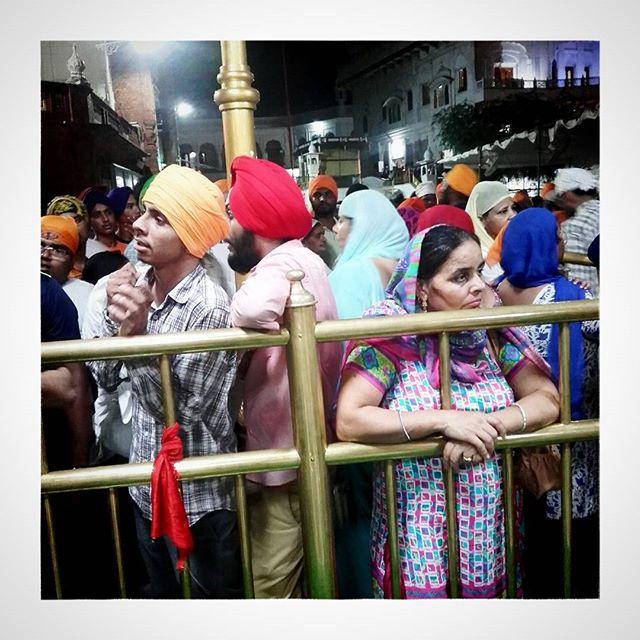 Waiting...#goldentemple #amritsar #sikh