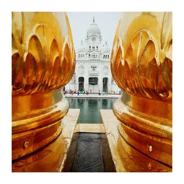 #Amritsar #goldentemple