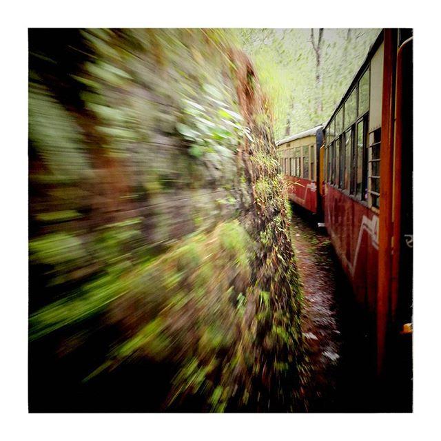 Full speed ahead!#shimla #train #toytrain #indiapictures #Kafka #india