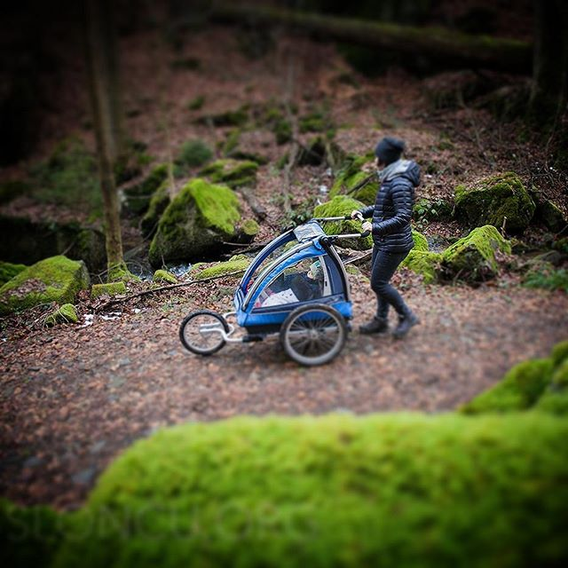 #spacer z #nordiccab i #rodzinka w Dzikim Wąwozie w #Pokrzywnik