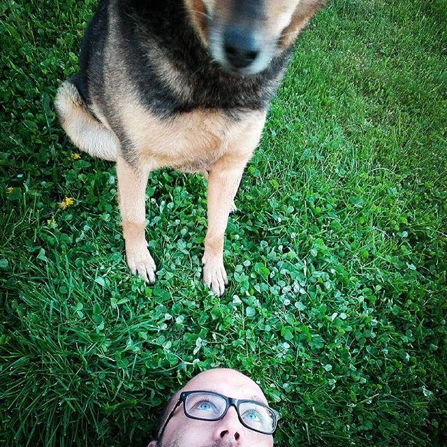 #pies co sie zowie #suria czyli wieczorem w ogrodzie...