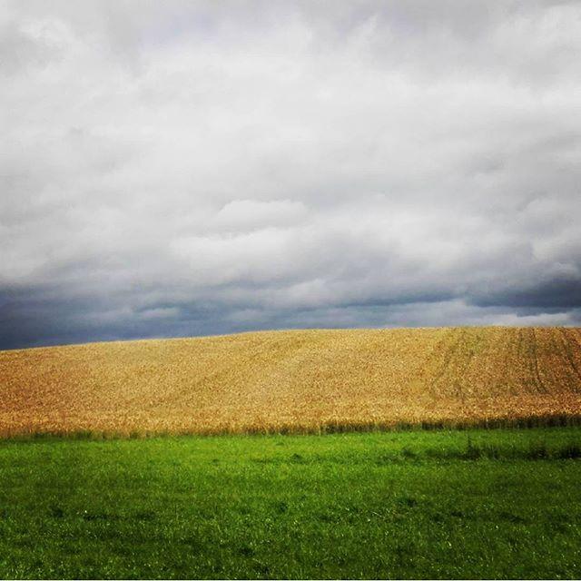 #suwalszczyzna ... klasyk ;)#huaweiphotography #landscape #poland